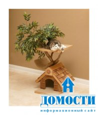 Уникальные дома для кошек