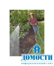 Правила полива газонов