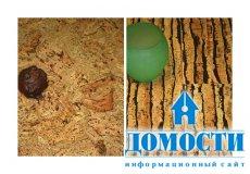 Экологически чистое напольное покрытие – пробка