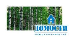 Функции и применение инвентаризации лесов