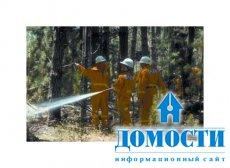 Опыт аборигенов помогает восстановлению и сохранению лесов