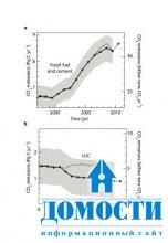 Выбросы от уничтожения лесов сократились