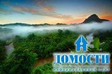 Каждый из нас может спасти тропический лес