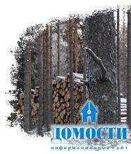 Краеугольный камень закона о лесе