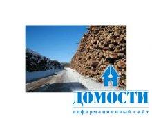 Российскую древесину станут контролировать