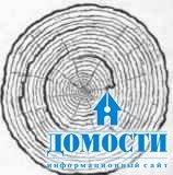 Пороки древесины: трещины.