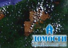 Косметика от Avon защитит тропический лес