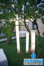 Эту лампу в ветвях не утаишь