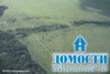 Главные виновники в рубке леса не найдены