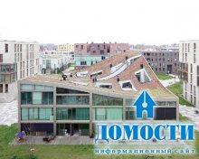 Неправильные дома в треугольном комплексе