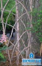 Украшаем сад подручным материалом