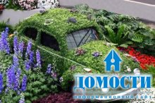 Тысяча способов украсить сад