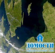 Биоразнообразие балтийского леса.