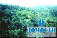 Сходства и различия мировых тропических лесов