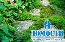 Готовь сани летом, а ландшафт сада - зимой
