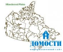 Смешанные канадские леса