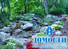 Садовые участки, радующие душу