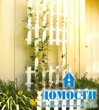Простые и потрясающие идеи для сада