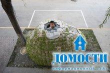 Яичный дом для молодого архитектора