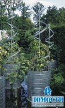 Естественное украшение сада