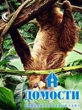 Биоразнообразие тропического леса