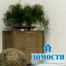 Современный дизайн дубовой мебели