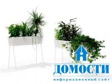 Экологичные цветочные кашпо