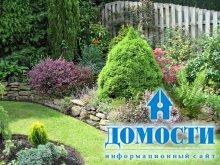 Сад, способный украсить любой дом