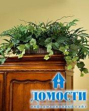 Влияние живых цветов на интерьер комнат