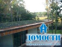 Крыши с особым микроклиматом