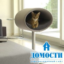 Современная кошачья кровать