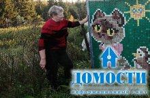 Сибирский дом с самодельной мозаикой