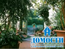 Сады под крышей круглый год