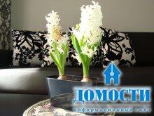 Современный дизайн цветочных горшков