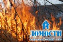 Защита леса от пожаров