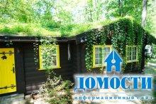 Норвежские дома с земляной крышей