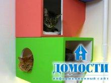 Современный кошачий дом
