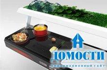 Экологичный дизайн кухни будущего