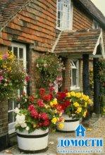 Цветочный ландшафт на даче