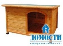 Дизайн собачьих будок